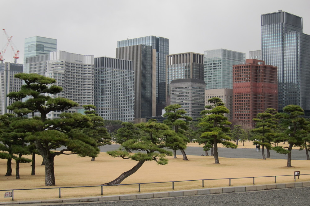 The towers of Marunouchi and Nihonbashi as viewed from the grounds of the imperial palace