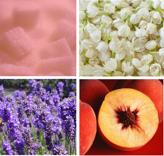 four scent grid copy.jpg