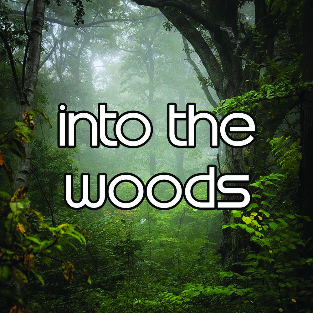 into the woods - Copy.jpg
