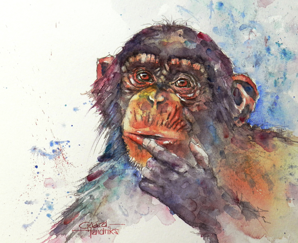 6278 Gerard Hendriks Chimpanzee 2.jpg
