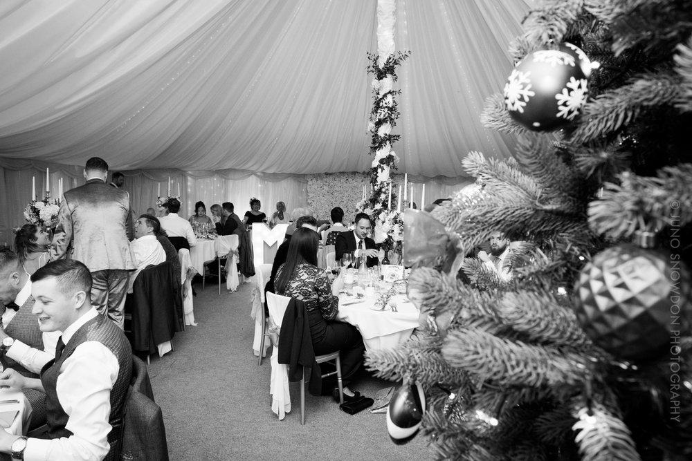 juno-snowdon-photography-Wedding-7831.jpg
