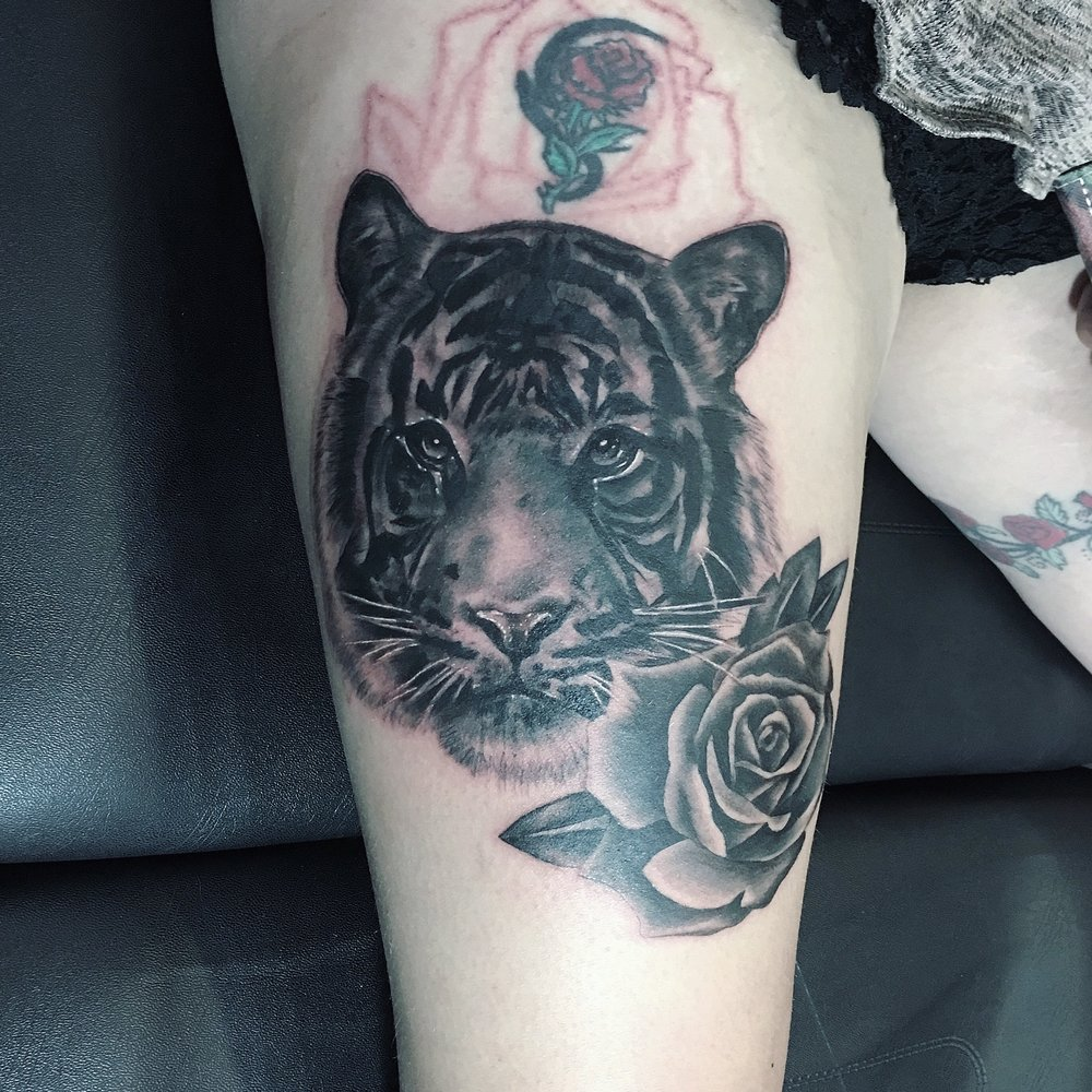 black and grey tiger and rose realism by mel hanson