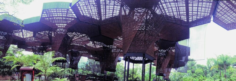 Jardín botánico de Medellín