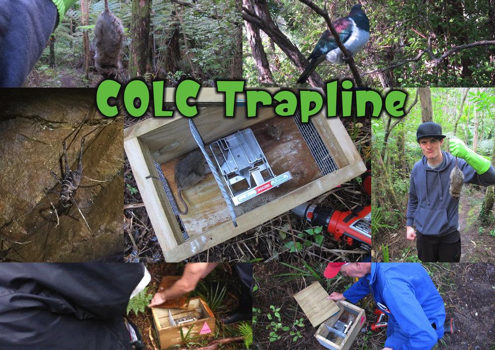 COLC Trapline.jpg