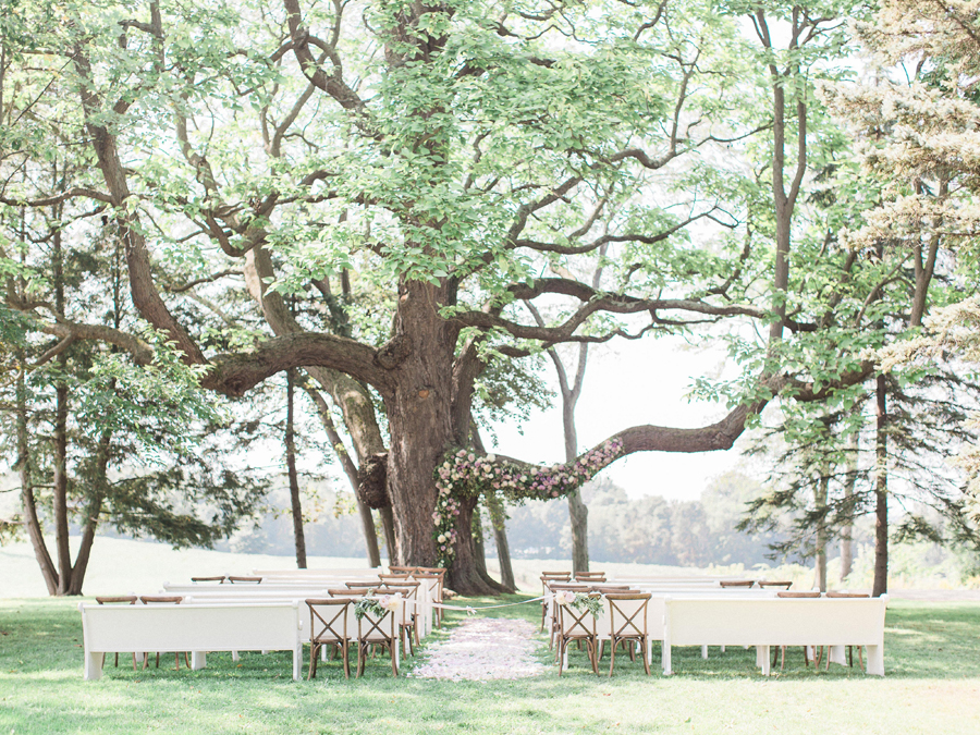 HiddenVineyardWedding7.jpg