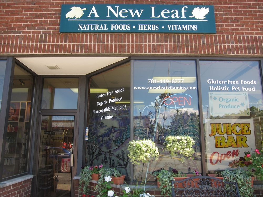 new leaf.jpg