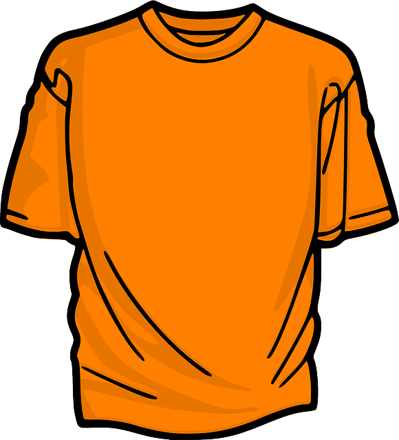 t-shirt-306168_640.png