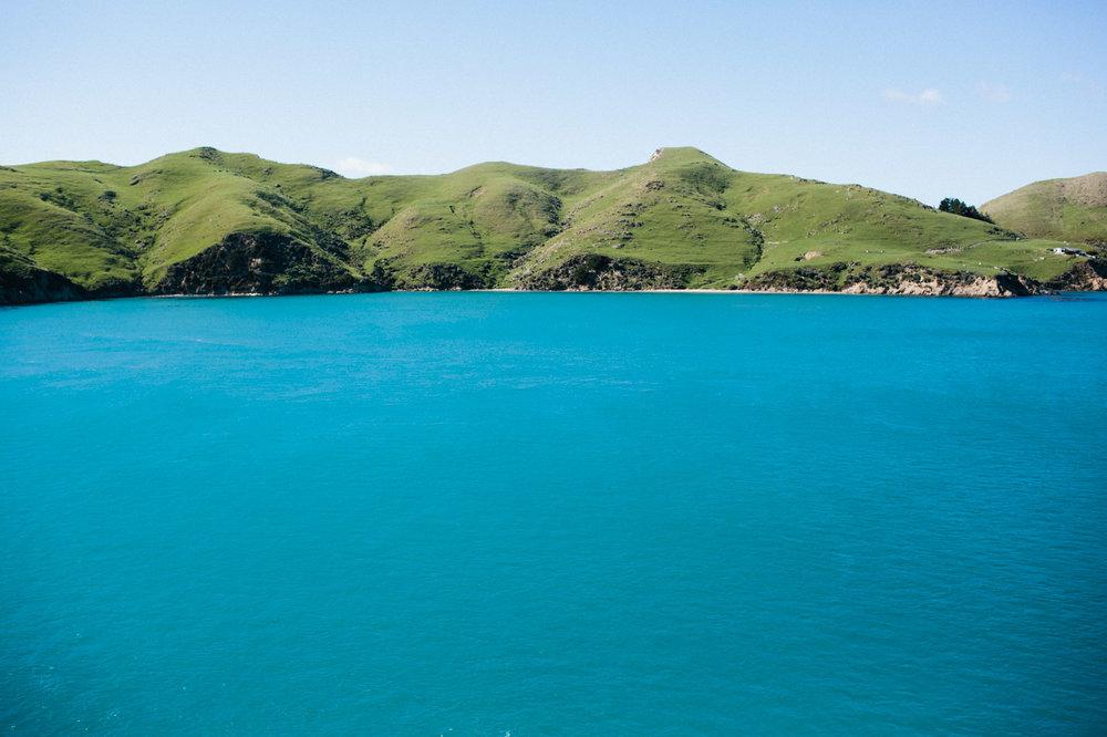New Zealand Web 2016-131.jpg