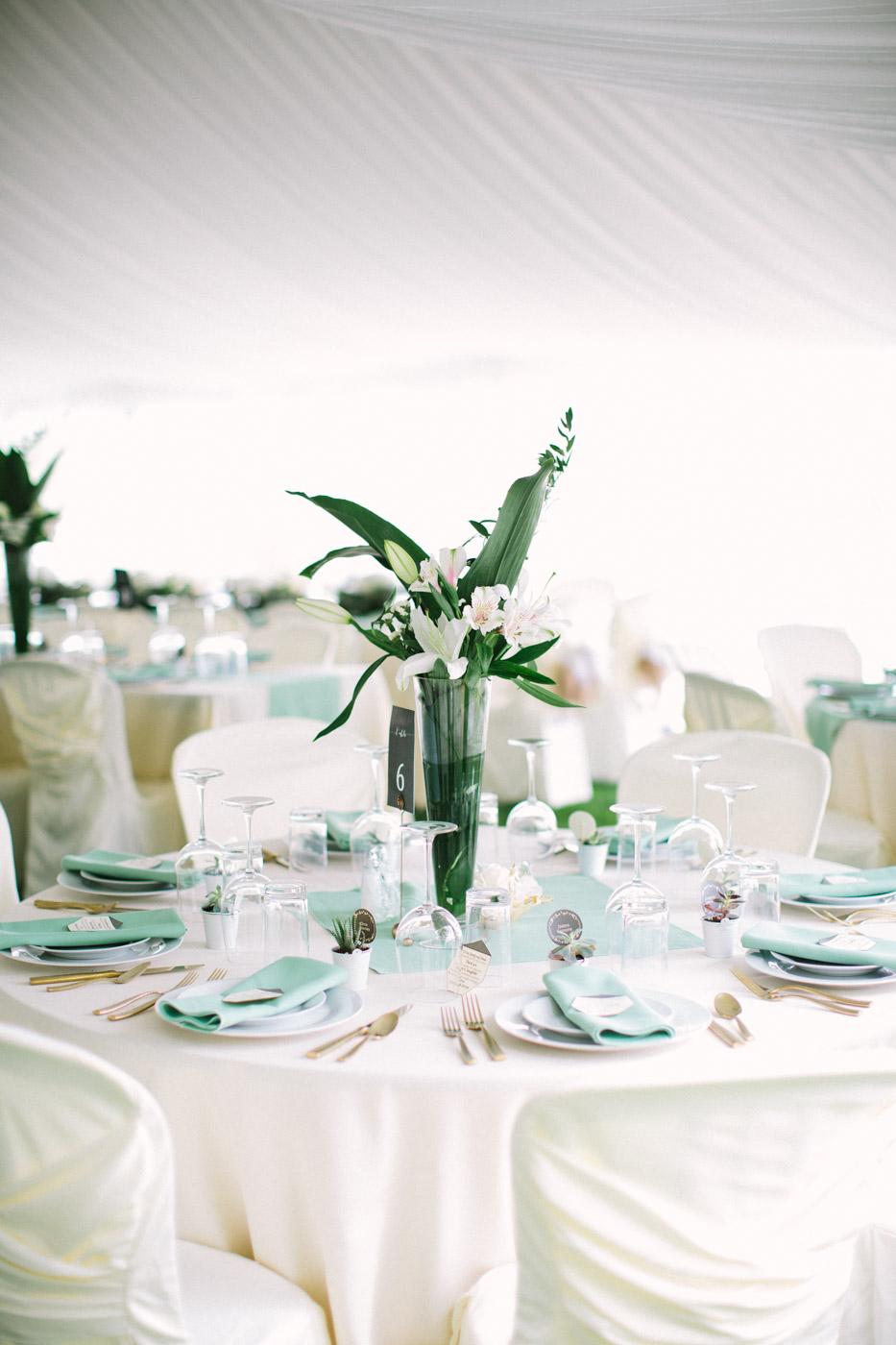 Backyard_collingwood_waterfront_diy_wedding-30.jpg
