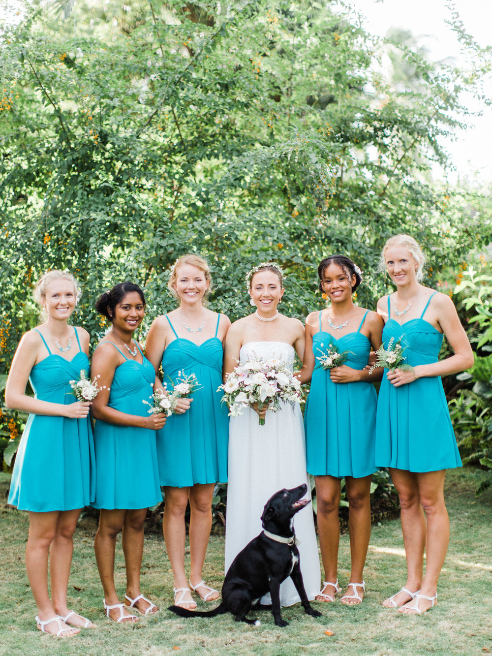 Include_dogs_in_your_wedding_photographs4.jpg