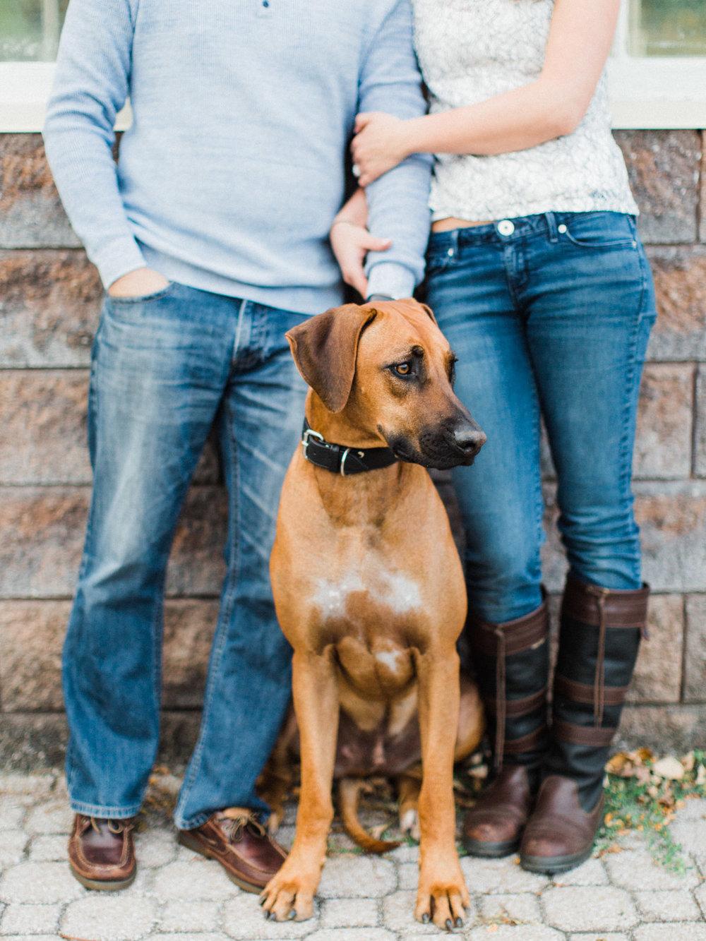 toronto_wedding_photographer_engagement_dog_inspiration-44.jpg