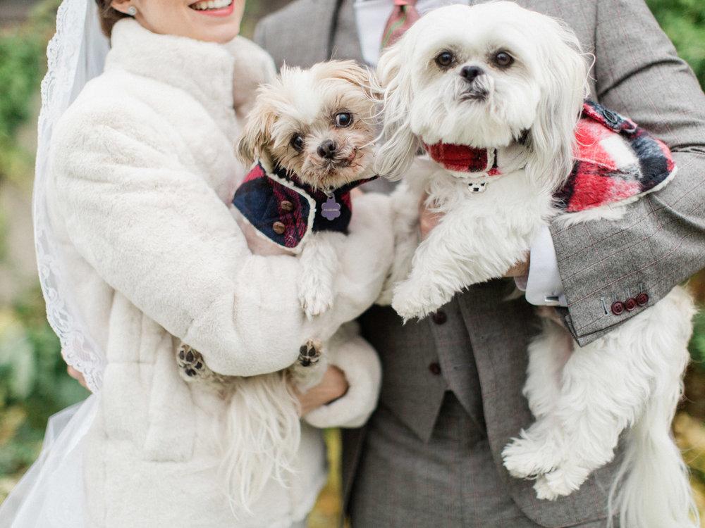 Toronto-wedding-photographer-st-georges-golf-club-jewish-modern-fall25.jpg