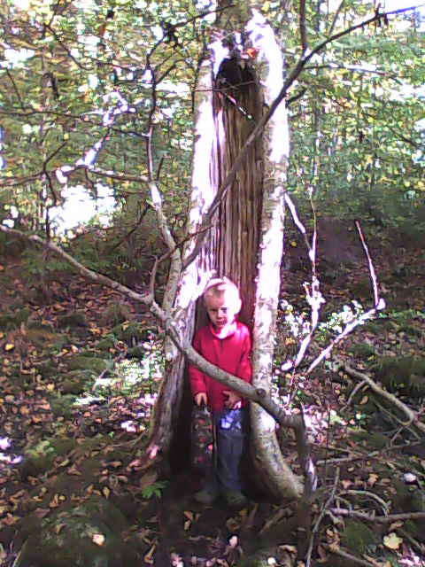 Kunsang in the mystical birch altar tree
