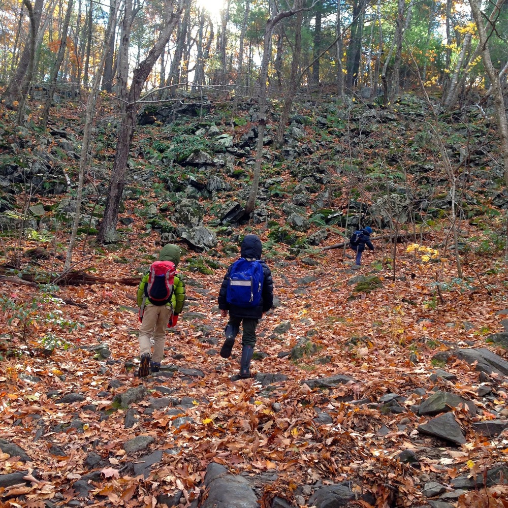 Hiking Up Mt. Tom