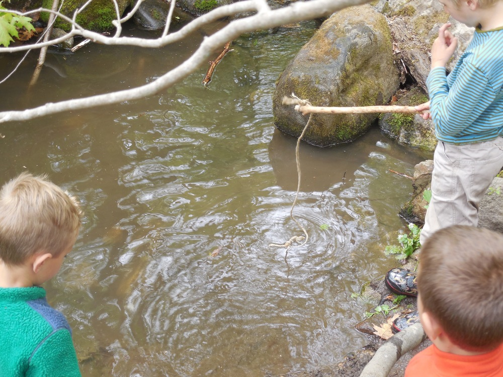 Fishing for crayfish with a baited line
