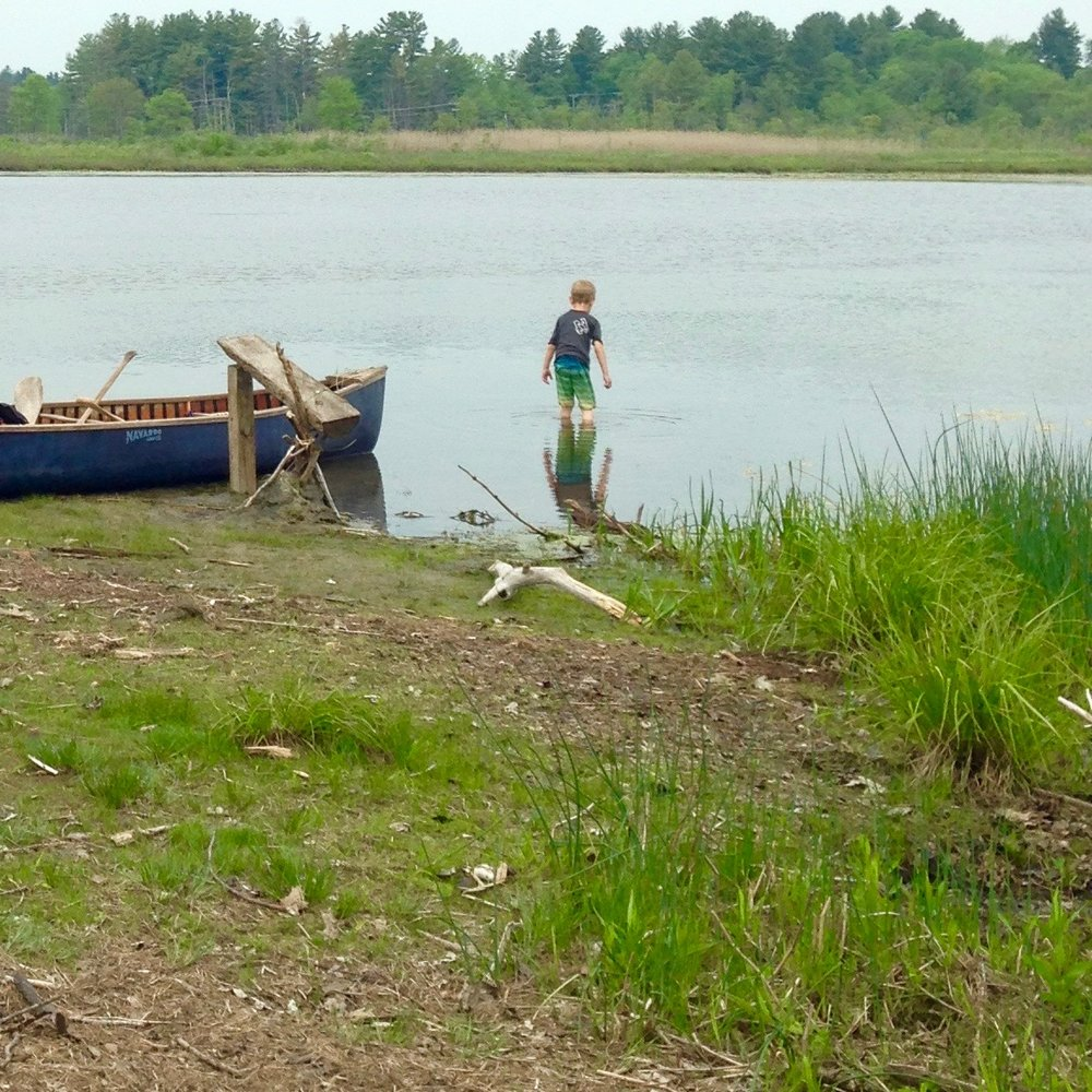 White Memorial field trip by canoe, along the Bantam River to Little Pond.