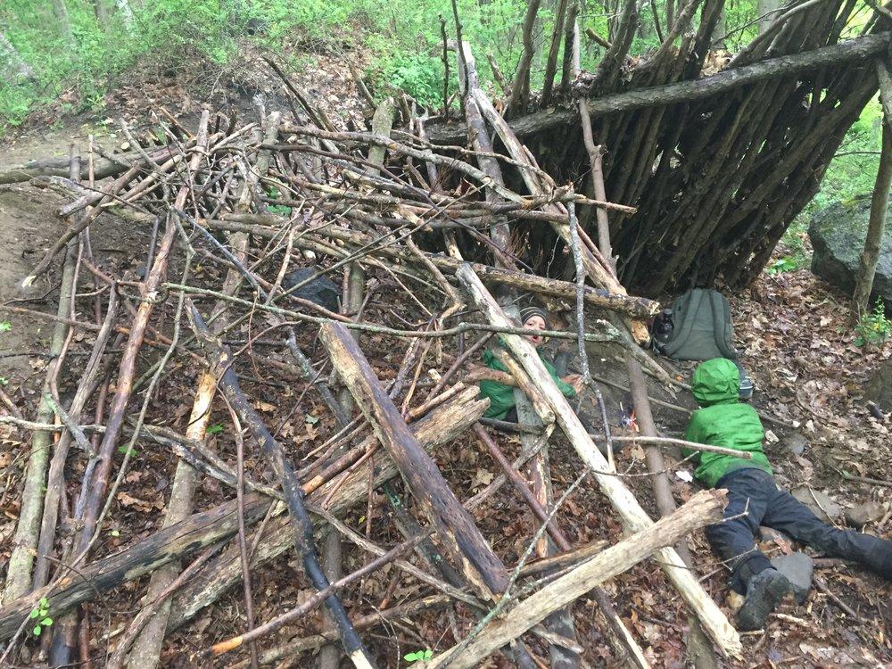Debris Shelter3.jpg