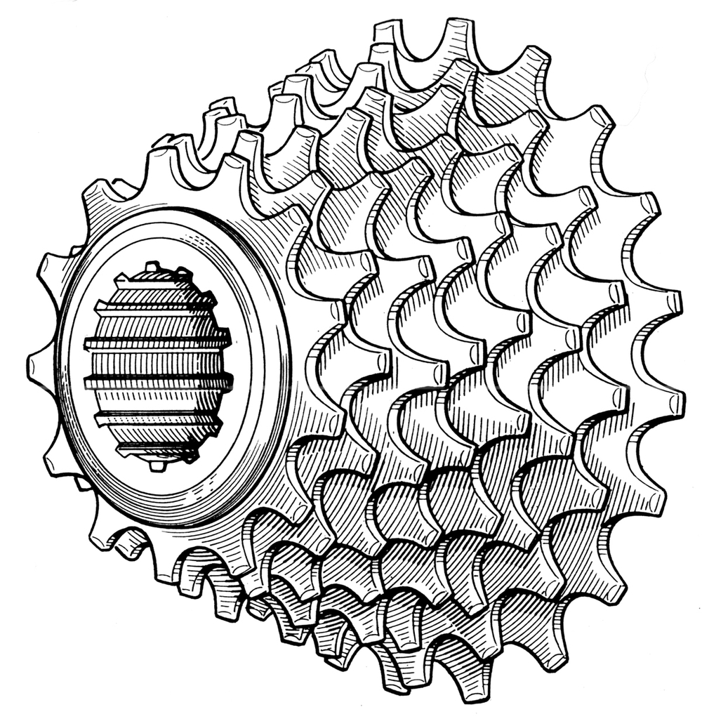 Bridgestone Catalogue - Eight Speed Cluster