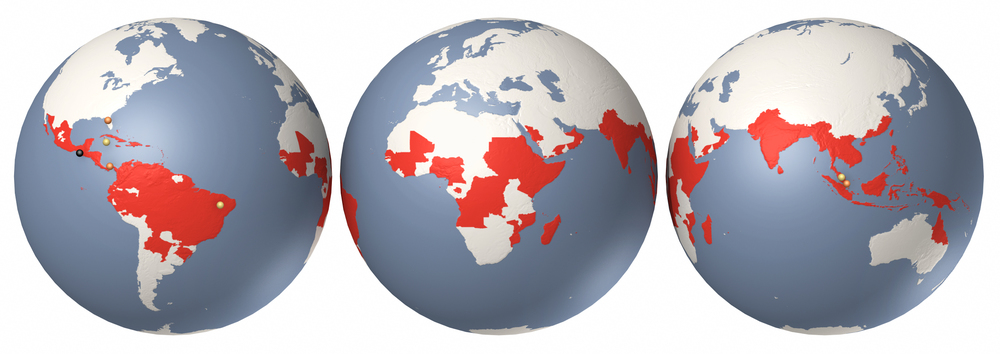 Scientific American - Dengue globes