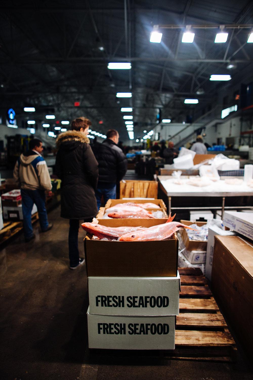 HeatherPhelpsLipton-Fish-HuntsPoint-FultonFishMarket-47.jpg