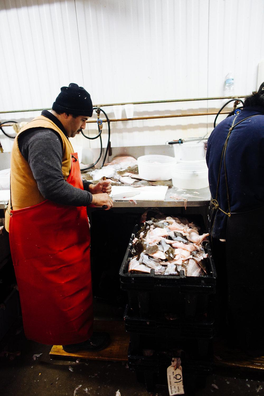 HeatherPhelpsLipton-Fish-HuntsPoint-FultonFishMarket-71.jpg