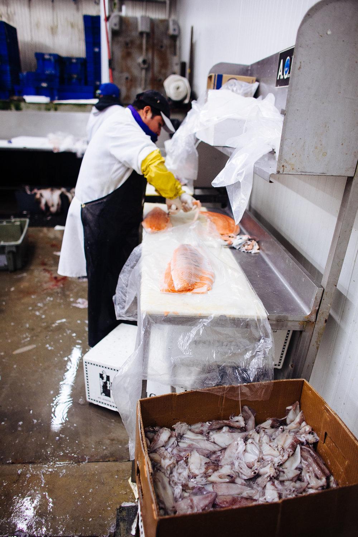 HeatherPhelpsLipton-Fish-HuntsPoint-FultonFishMarket-82.jpg