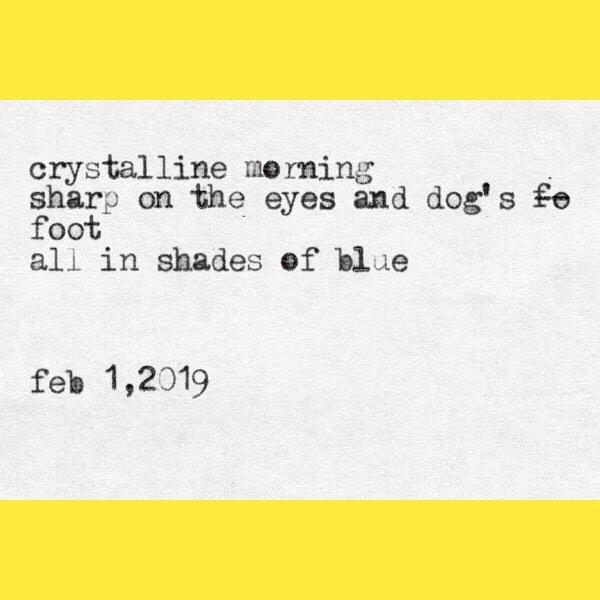 haiku for a minus seven morning. #catskillwinter #polarvortex