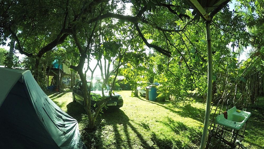 nimbin campsite