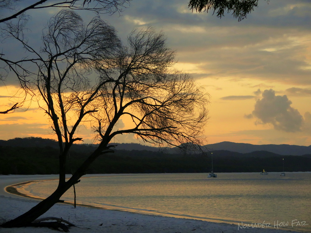 Whitehaven Beach was an amazing place, this is the view in the evening when all the tours leave!