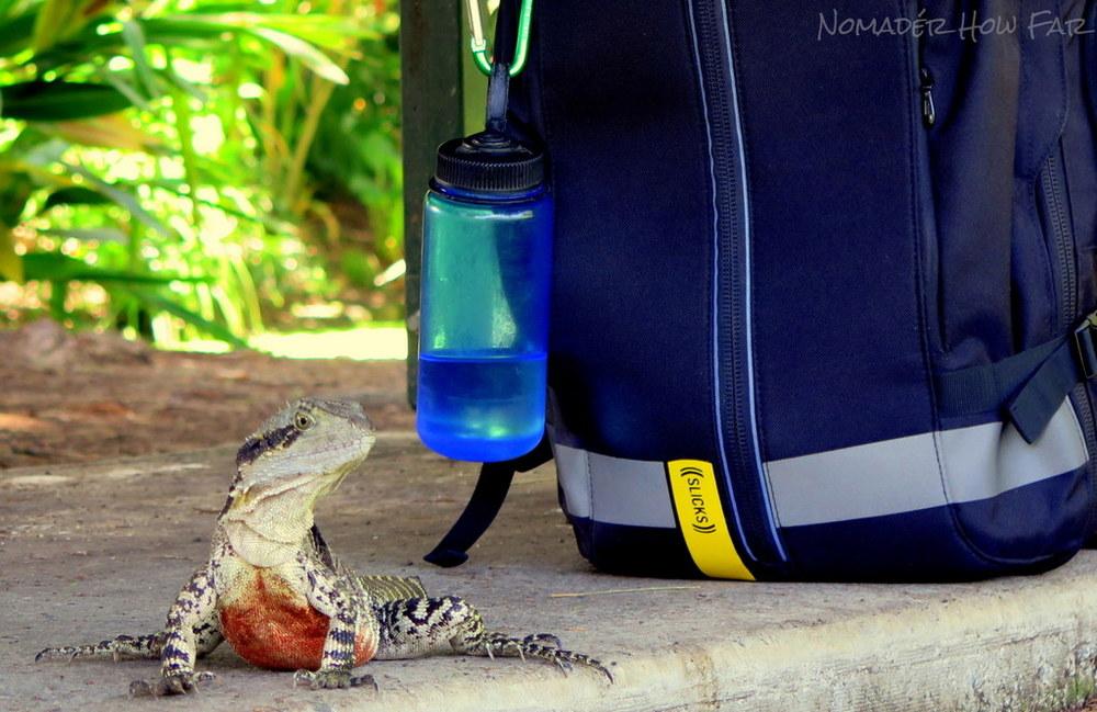 slicks travel bag