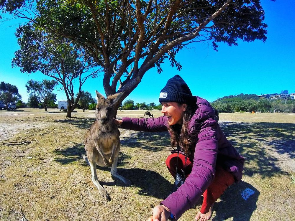 Petting a kangaroo for the first time, Pambula, Australia