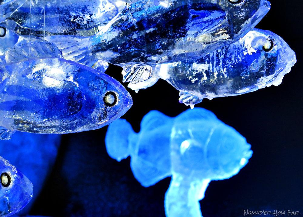 ice fish