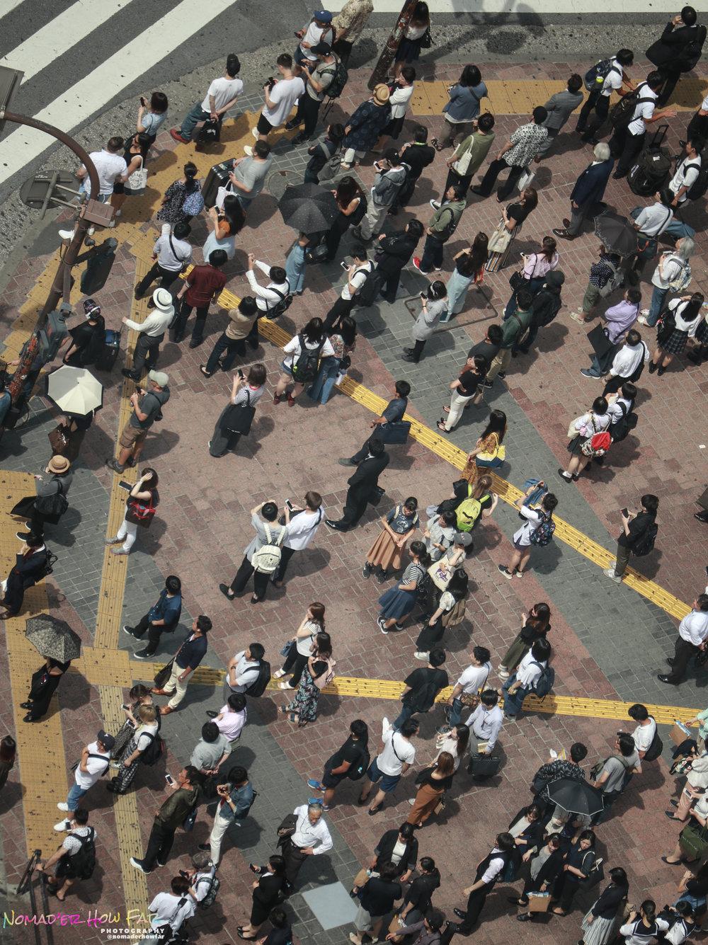 Shibuya crossing // Tokyo, Japan
