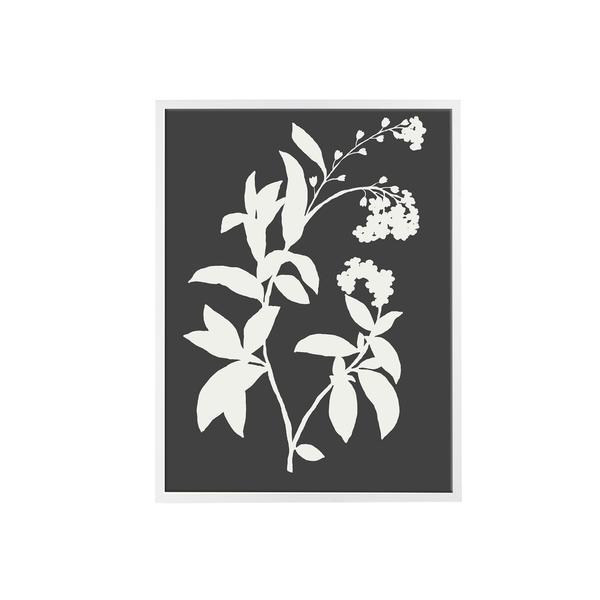 Black_and_White_Leaf_1_600x600_crop_center.jpg