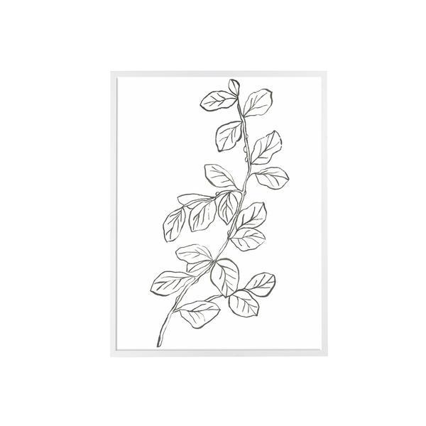 Leaf_Sketch_II_600x600_crop_center.jpg