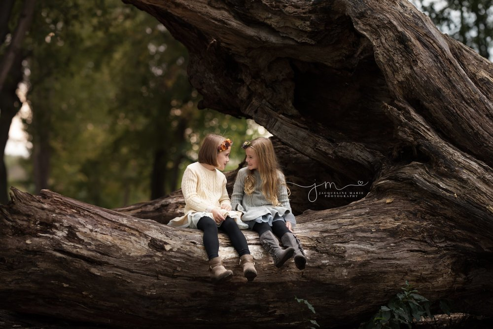 sisters wear cream and gray ruffle sweater dresses and smile while laughing together on a wood log in Columbus ohio for family photography