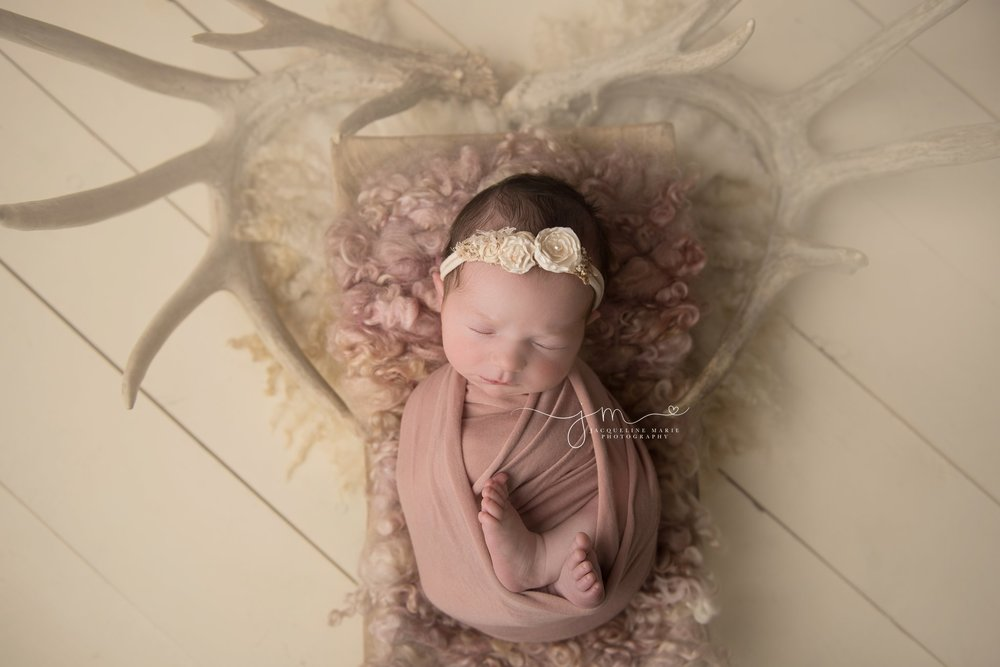 columbus ohio newborn baby girl is posed with antlers for her newborn session with jacqueline marie photography