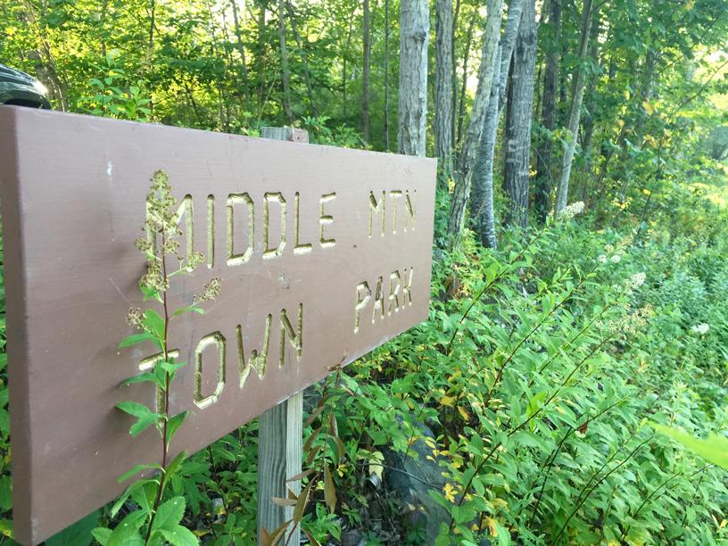 Middle Mt. Town Park