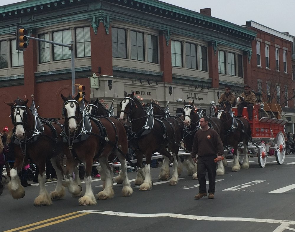 Thanksgiving day parade in Plymouth!