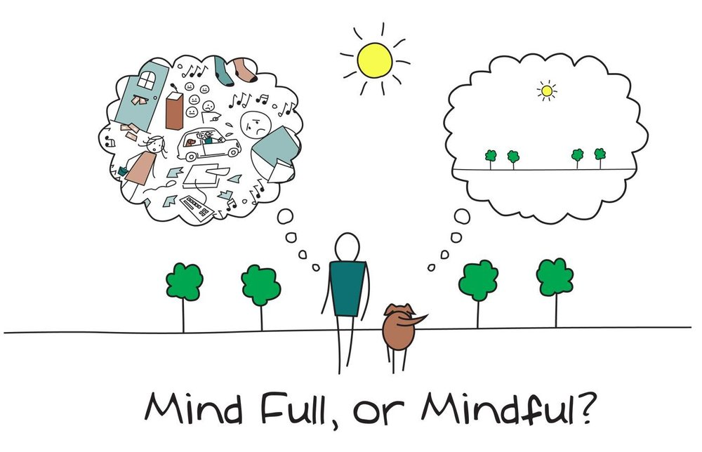 mindfuldog.jpg