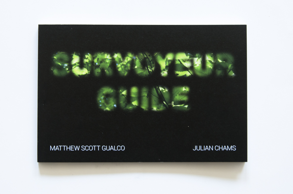 SurvoyeurGuide-100.jpg