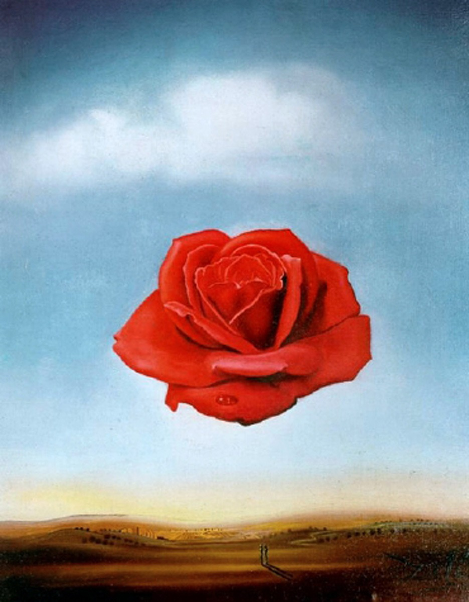 "One of my favourite pieces by Salvador Dali: ""Meditative Rose."" Makes my brain tingle."