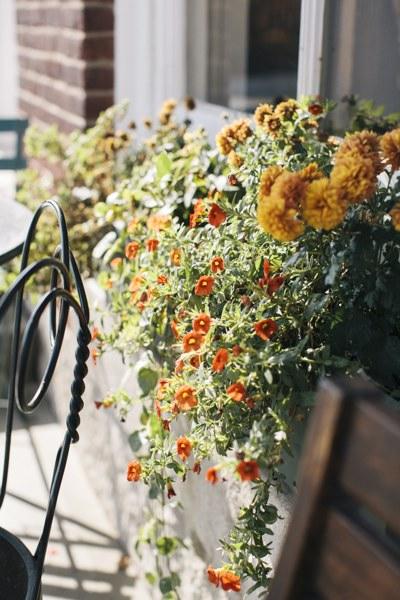 porchflowers.jpg