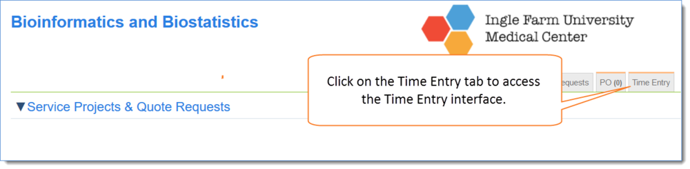 Figure 1: Click on the Time Entry tab.