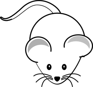 mouse-balbc-md.png