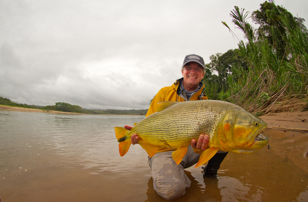 TSIMANE BOLIVIA : In the heart of the Bolivian jungle lies the world's finest Golden Dorado fishery.
