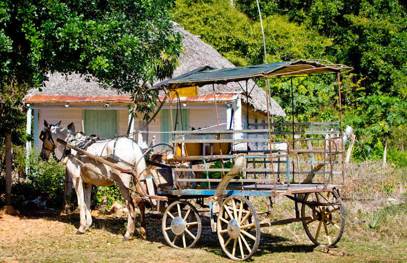 Typical Cuban house in the countryside, with a very common mode of transportation parked out front.