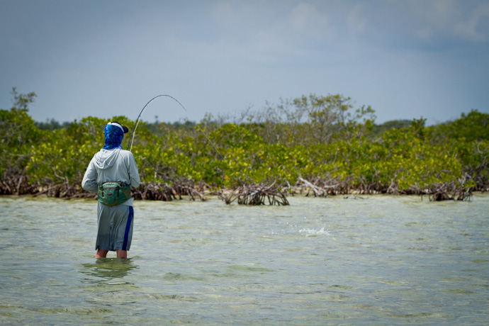 Teddy hooked up to his first Bonefish, Cayo Cruz, Cuba