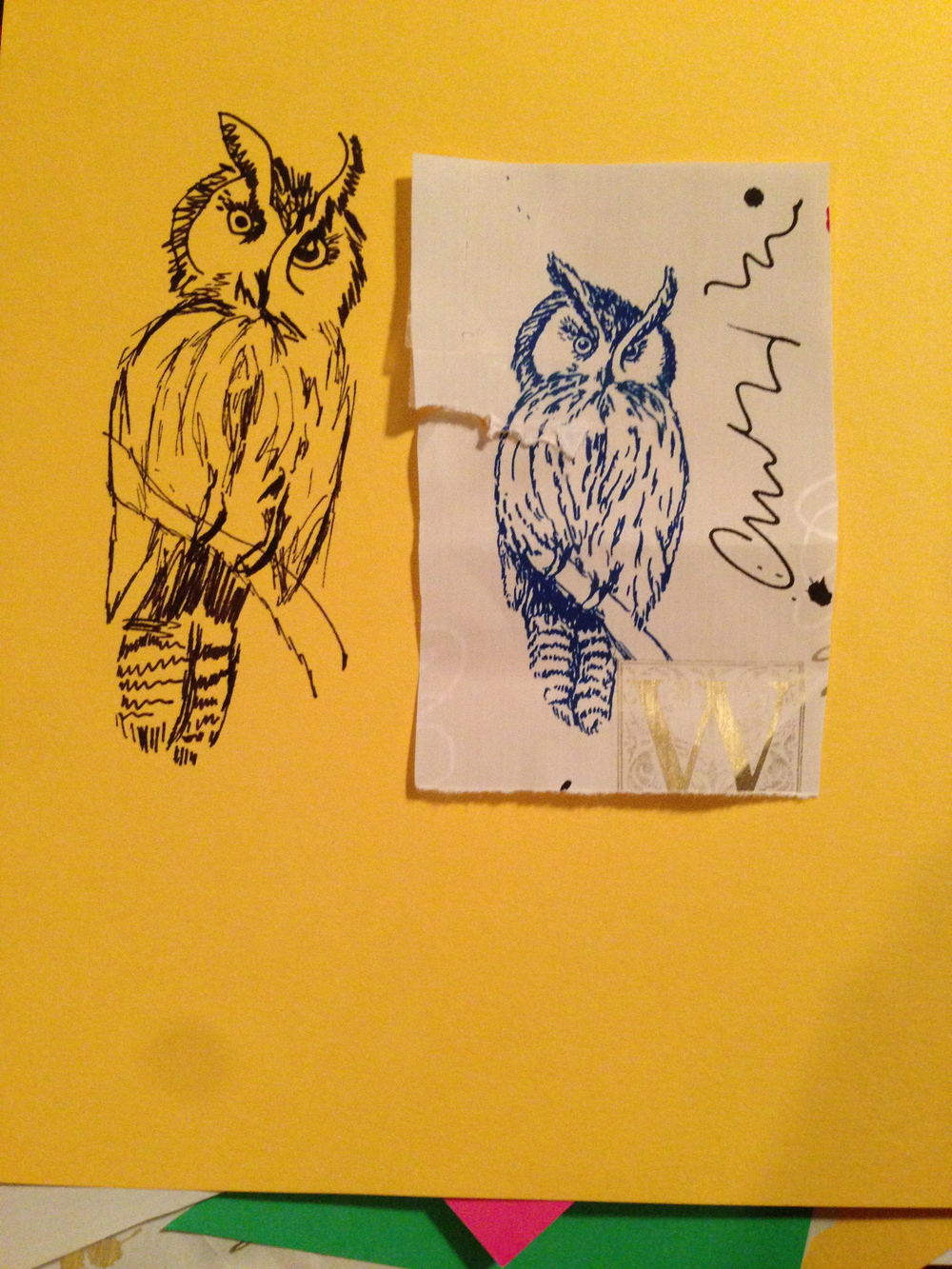 On the Left, owl drawing by Jill. On the Right is an owl picture from some wrapping paper that I had saved. 7 March 2013.