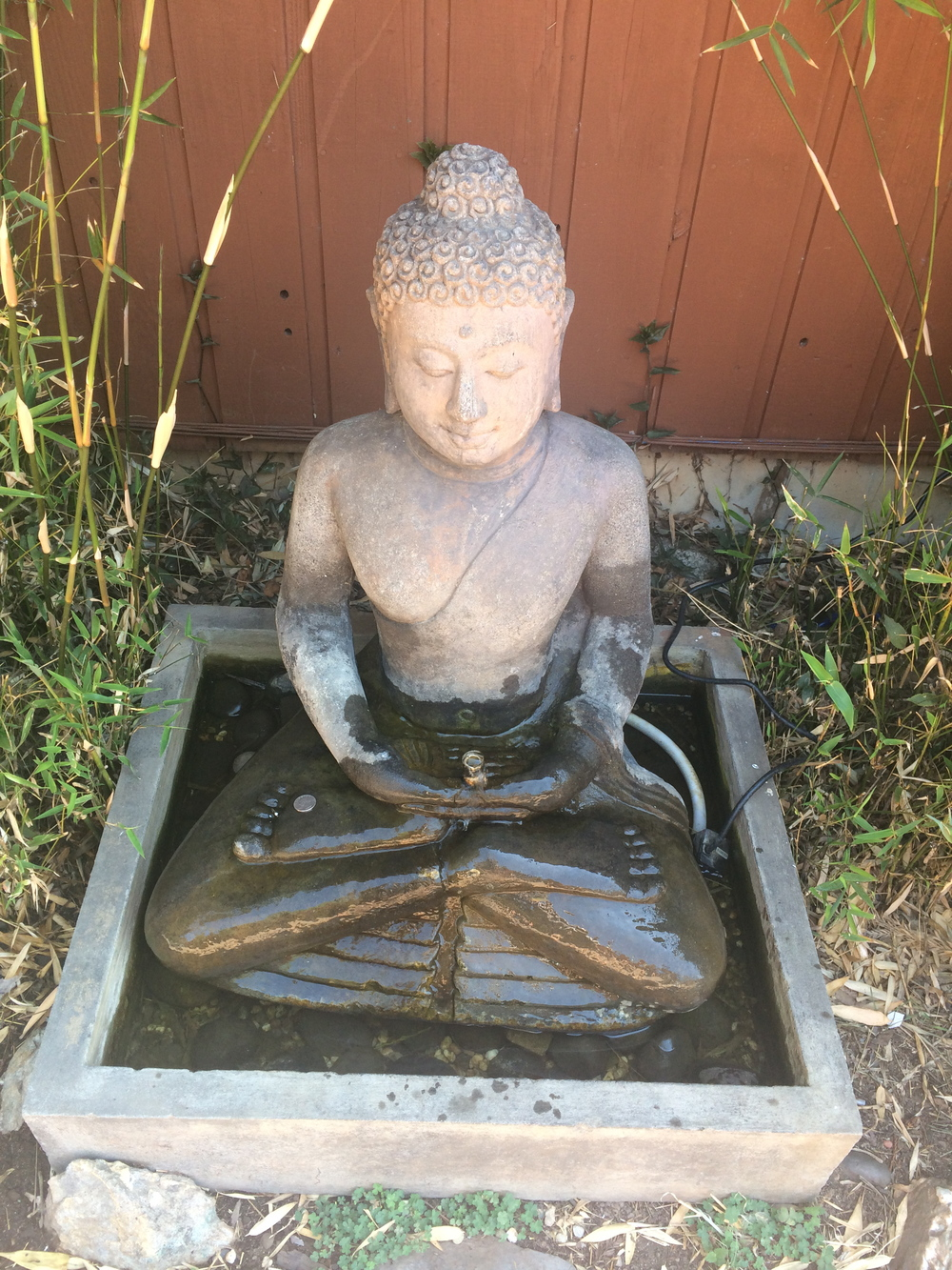 Softly sitting Buddha.  Mt. Madonna Center, California.  12 September 2014.